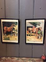 Framed Vintage Prints